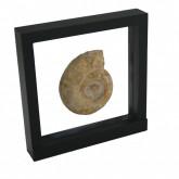 3D Zwevend display-raam 180 x 180 mm. zwart