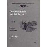 Geschiedenis v.h. leven - 5a - Carboon Invertebraten
