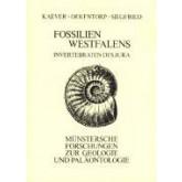 Fossilien Westfalens - Invertebraten der Jura
