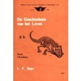 Geschiedenis v.h. leven - 6b - Perm Chordaten