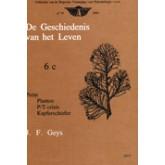Geschiedenis v.h. leven - 6c - Perm, planten