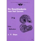 Geschiedenis v.h. leven - 7b - Trias- Mollusken