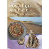 Fossilien sammeln in England-Wales-Schottland